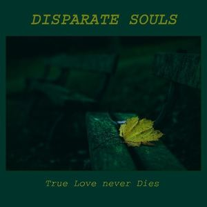 Disparate Souls