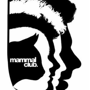 Mammal Club - Painting