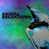 ANIMAL BREAKDOWN