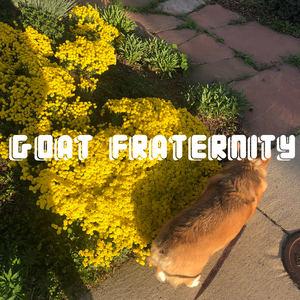Goat Fraternity