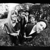 Night Flowers - Cruel Wind (Radio Edit)