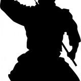 shadow.ninja