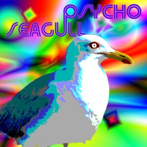 Psycho Seagull