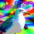 Psycho Seagull