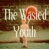 The Wasted Youth - Liars Hate Cameras