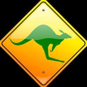 polkadot kangaroo