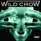 Wild Crow - Brighter Day