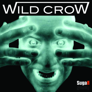 Wild Crow - Brighter Day