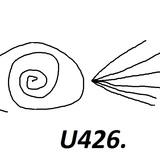 U426 - Klockwerk